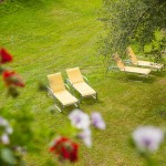Gästehaus Hörnerblick- Blick in den Garten