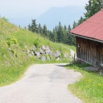 Alpe auf dem Weg zum Gipfel - Ofterschwanger Horn